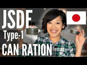 Japanese Self-Defense Forces CAN Ration TASTE TEST | Type-1 JSDF