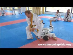 Korean art of self defense Hapkido – Hankido
