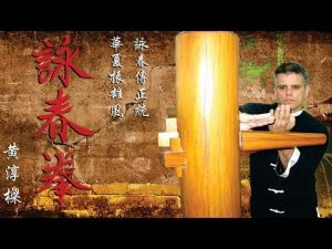 WING CHUN SELF DEFENSE Aula de Chute 詠春 功夫 Kung Fu Artes Marciais Chinesa #France