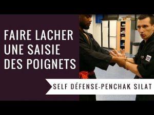 COMMENT FAIRE LACHER UNE SAISIE DES POIGNETS ? (PENCHAK SILAT – SELF DEFENSE)