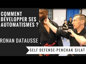 "COMMENT COMBATTRE EN ""PILOTE AUTOMATIQUE"" ? (PENCHAK SILAT – SELF DEFENSE)"