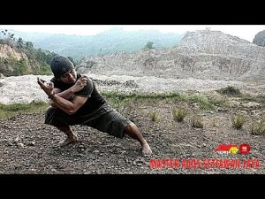 Pencak Silat Master Agus Setiawan Jaya Unrehearshed Self Defense
