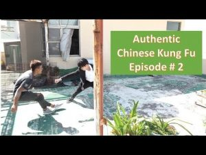 Authentic Chinese Kung Fu / Self-defense / Online Training – Episode # 2 – Leon Chu (朱思勳)