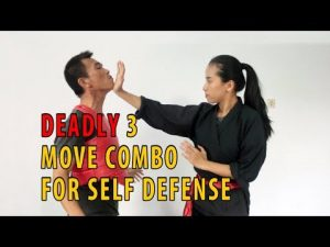 deadly 3 move combo for self defense