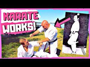 One WEIRD Kata Bunkai For Practical Self-Defense (Chinto / Gankaku)