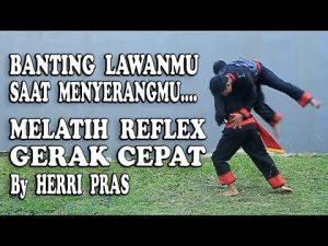Self Defense REFLEX !! Gerak Cepat Melumpuhkan Serangan Lawan